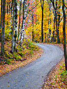 Vermont Fall Foliage Framed Prints - A Vermont Country Road Framed Print by Thomas Schoeller