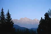 Silhouettes Metal Prints - A View At Sunset Of The Piz Muragl Metal Print by Taylor S. Kennedy