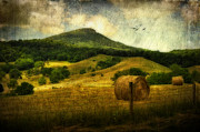 Rockbridge County Posters - A View Of Jump Mountain Poster by Kathy Jennings