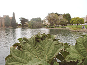 Flower Works Photos - A view of Palace of Fine Arts theatre San Francisco No six by Hiroko Sakai