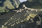 American Architecture And Art Framed Prints - A View Of Stone Terraces At Machu Framed Print by David Evans