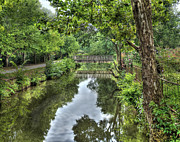 Canal Photo Originals - A view of the Canal by Arnie Goldstein