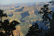 Grand Canyon Scenes Prints - A View Of The Grand Canyon Print by Bill Hatcher