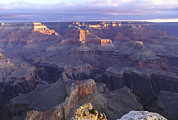 Grand Canyon Scenes Prints - A view of the Grand Print by Norbert Rosing