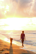 Dog Walking Digital Art Posters - A Walk Along The Beach Poster by Deon Grandon