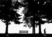Benches Digital Art Posters - A Walk In The Park Poster by Artecco Fine Art Photography - Photograph by Nadja Drieling