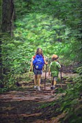 Terry Digital Art - A walk in the woods by Terry Sita