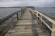 Turkey Metal Prints - A Weathered Pier Leads Metal Print by Stephen St. John