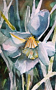 Gold Drawings Prints - A Weepy Daffodil Print by Mindy Newman