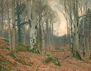 Autumn Landscape Painting Prints - A Welsh Wood in Winter Print by JT Watts