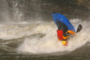 Athletes Posters - A Whitewater Kayaker Upside Poster by Skip Brown