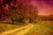 Sunset Greeting Cards Digital Art Prints - A Winding Road - Bayonet Farm Print by Angie McKenzie