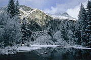 River Scenes Posters - A Winter View Of The Merced River Poster by Marc Moritsch