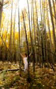 Aspen Prints - A woman in the aspen Print by Scott Sawyer
