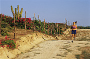 Jogging Posters - A Woman Jogs On A Dirt Road In Baja Poster by Jimmy Chin