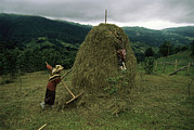 Etc. Photos - A Woman Rakes Around A Haystack by Randy Olson