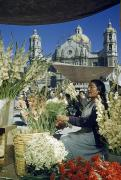 Our Lady Of Guadalupe Framed Prints - A Woman Sells Flowers In Plaza Near Our Framed Print by Justin Locke