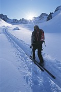 A Woman Skiing In The Selkirk Print by Jimmy Chin