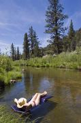 Lifestyle Photo Posters - A Woman Sunbathes In The Kern River Poster by Rich Reid