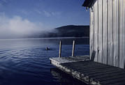 Boathouses Photos - A Woman Swims In A Lake On An Early by Taylor S. Kennedy
