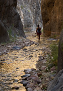 Rock Walls Prints - A Woman Walks Through A Narrow Canyon Print by Pete Mcbride