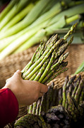 Baskets Photos - A Womans Hand Holds Asparagus by Taylor S. Kennedy