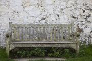 Park Benches Photo Metal Prints - A Wooden Bench With Peeling Paint Metal Print by John Short