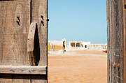 Y120817 Art - A Wooden Door Opens To The Ruins Of An Abandoned Fishermen Village, Al Hamra, United Arab Emirates by Mohamed El Hebeishy