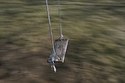 Sporting Equipment Framed Prints - A Wooden Swing Waits For A Rider Framed Print by Roy Gumpel