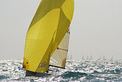 Backlit Posters - A Yellow Spinnaker Is Lit Poster by Hibberd, Shannon