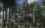 Tree Creature Framed Prints - A Young Diplodocus Dinosaur Feeding Framed Print by Mark Stevenson