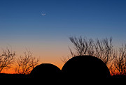 Bare Trees Prints - A Young Moon Sets Over Two Domed Print by John Davis