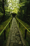 Religions Prints - A Zen Path Leads To The  Entrance Print by Michael S. Yamashita