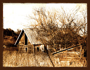 Textured Photo Framed Prints - Abandoned Barn  Framed Print by Ann Powell