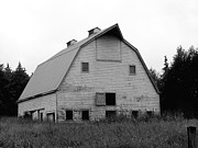 White Barn Photos - Abandoned Barn by Art Block Collections
