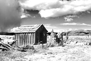 Shed Digital Art Metal Prints - Abandoned  Metal Print by Denise Oldridge