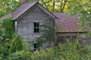 Morgan County Prints - Abandoned Farmhouse on Stacy Fork Print by Douglas Barnett