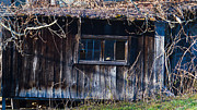 Morgan County Prints - Abandoned Frarmhouse 11 Print by Douglas Barnett