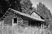 Log Cabin Photo Metal Prints - Abandoned Homestead Metal Print by Richard Rizzo