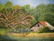 Blue Ridge Parkway Paintings - Abandoned Mimosas by Shirley Braithwaite Hunt