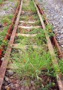 Ballast Framed Prints - Abandoned Railroad Tracks Framed Print by Yali Shi