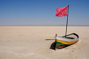 Desert Lake Posters - Abandoned rowboat in dry salt lake Poster by Sami Sarkis