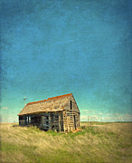 Run Down Shack Posters - Abandoned Shack Poster by Jill Battaglia