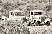 Old Pickup Photos - Abandoned Trucks Black and White by Connie Cooper-Edwards