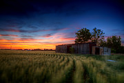 Boxcar Prints - Abandoned View Print by Thomas Zimmerman