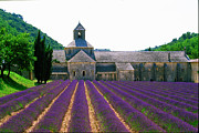 Provence Digital Art Originals - Abbaye de Senanque by John Galbo