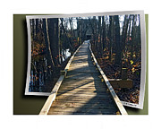 Fx Framed Prints - Abbotts Nature Trail Framed Print by Brian Wallace