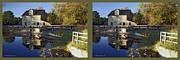 Nature Center Pond Prints - Abbotts Pond - Gently cross your eyes and focus on the middle image Print by Brian Wallace