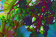 Grapevines Framed Prints - Abiding in the Vine #2 Framed Print by Liz Evensen