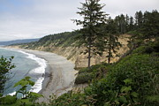 Agate Beach Art - Above Agate Beach by Michael Picco